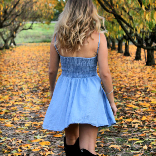 rosegal-denim-dress-shenska-fall-style