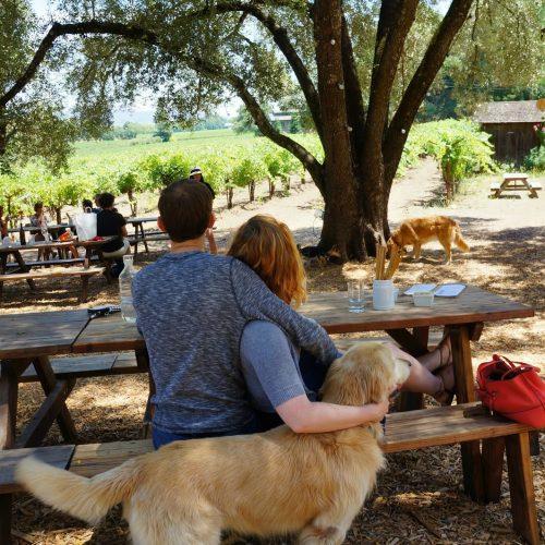 saint-helena-tres-sabores-winery