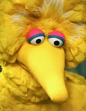 Big Bird Halloween Costume
